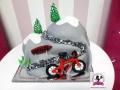 tort-marzenie-gory-rower-3