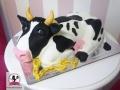 tort-marzenie-krowa.jpg