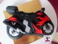 tort-marzenie-motor-6