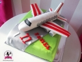 tort-marzenie-samolot.jpg
