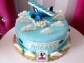 tort-marzenie-roczek-samolot-2