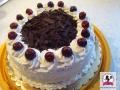 tort-tradycyjny-1